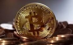 Bitcoin Bandwagon Causes Crash