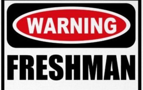Dear Freshmen