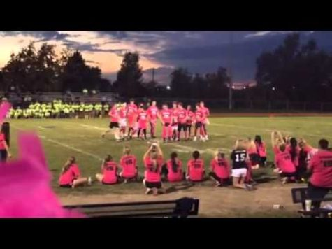 Holt's Powderpuff