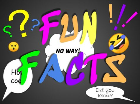 A Weekly Dose of Fun Facts #3